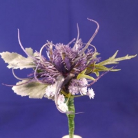 Dream Mum purple buttonhole