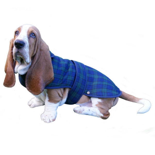 Large Dog Coat Scottish Dogs Amp Accessories The