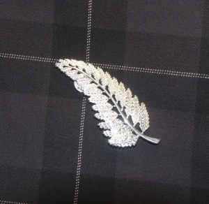 The special kilt pin on Pride of NZ tartan.  You too can wear a silver fern